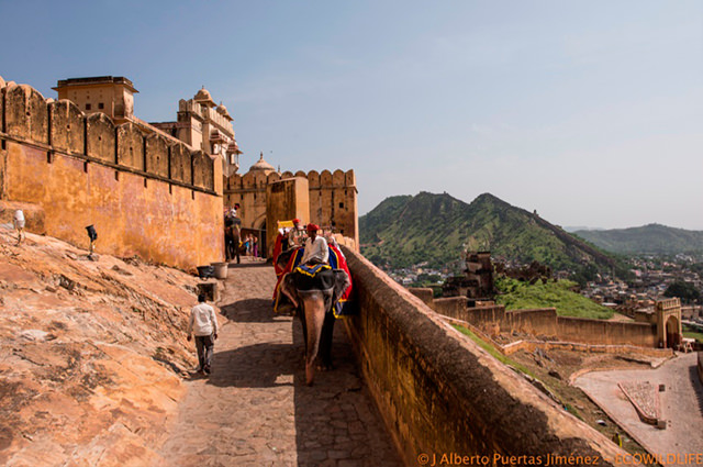viaje-india-2