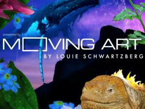 Moving Art una serie de documentales de naturaleza